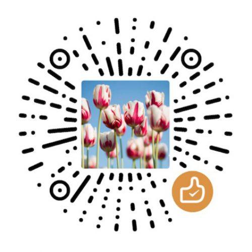 WeChat donation code